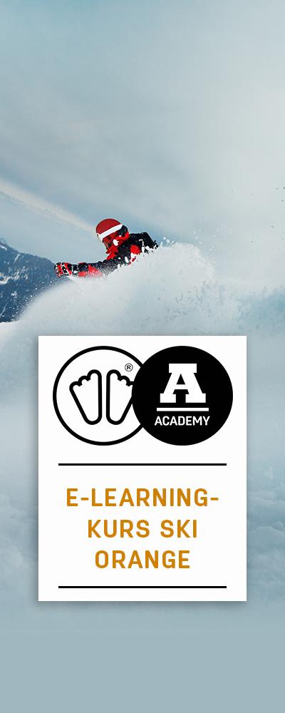 E-learning-kurs-Ski orange